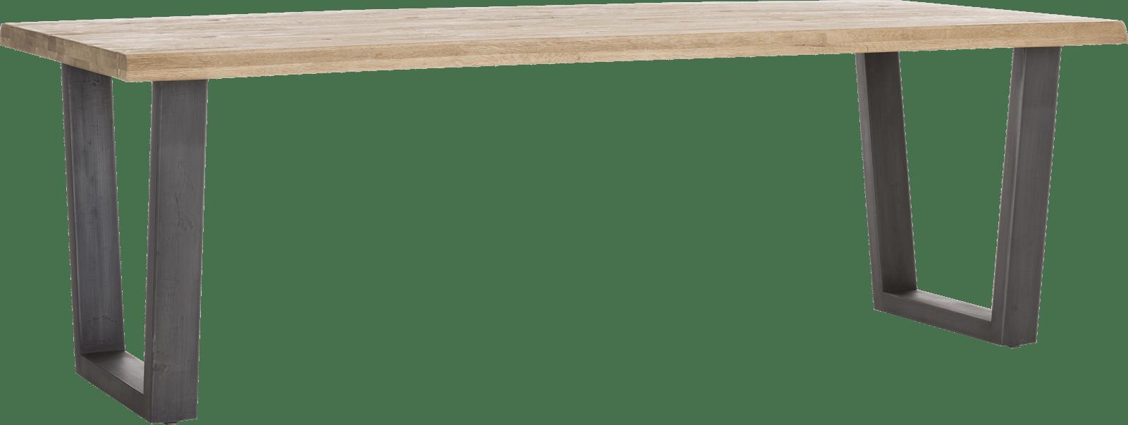 Metalox - eetkamertafel 230 x 100 cm