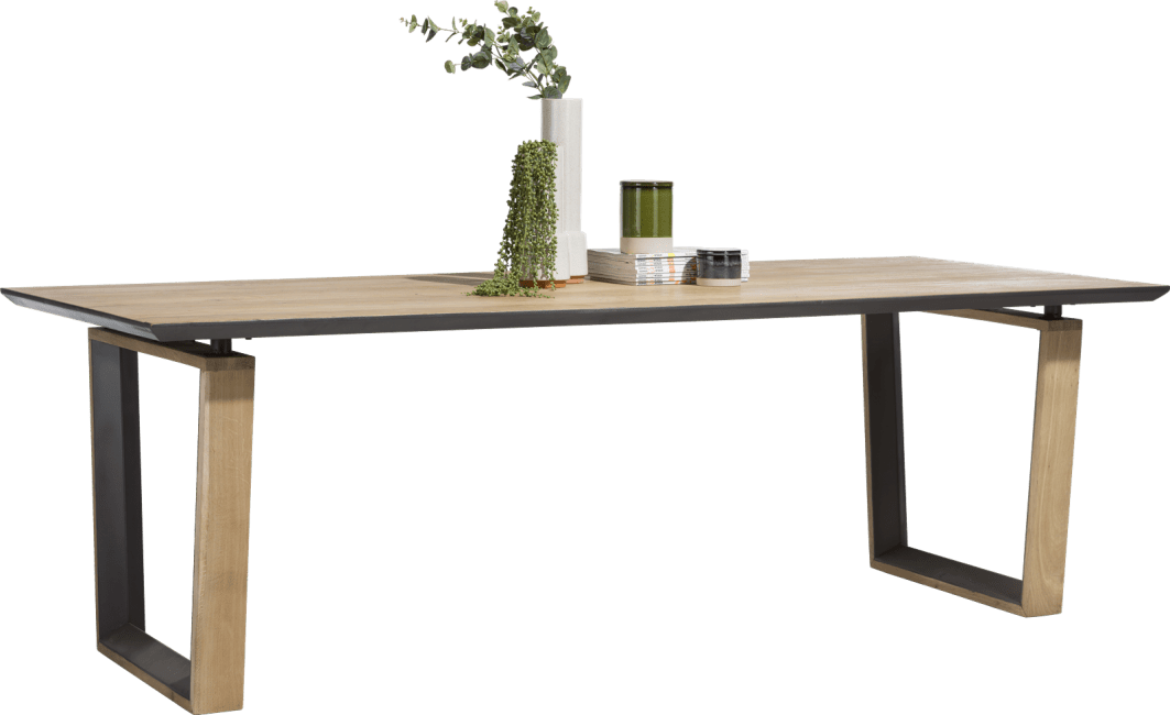 Pedro - eetkamertafel 240 x 100 cm