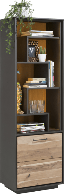 Cenon - boekenkast 1-deur + 5-niches (+ led)