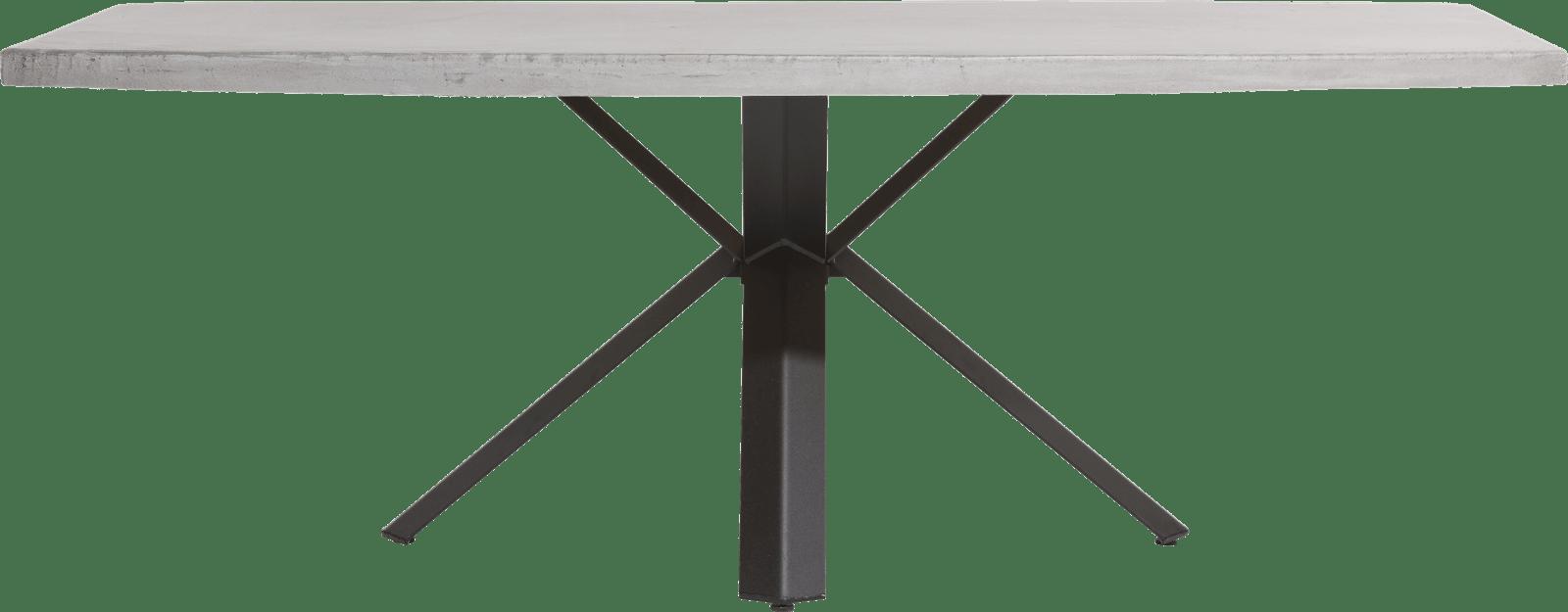 Maddox - table 220 x 100 cm - beton - pied forme etoile
