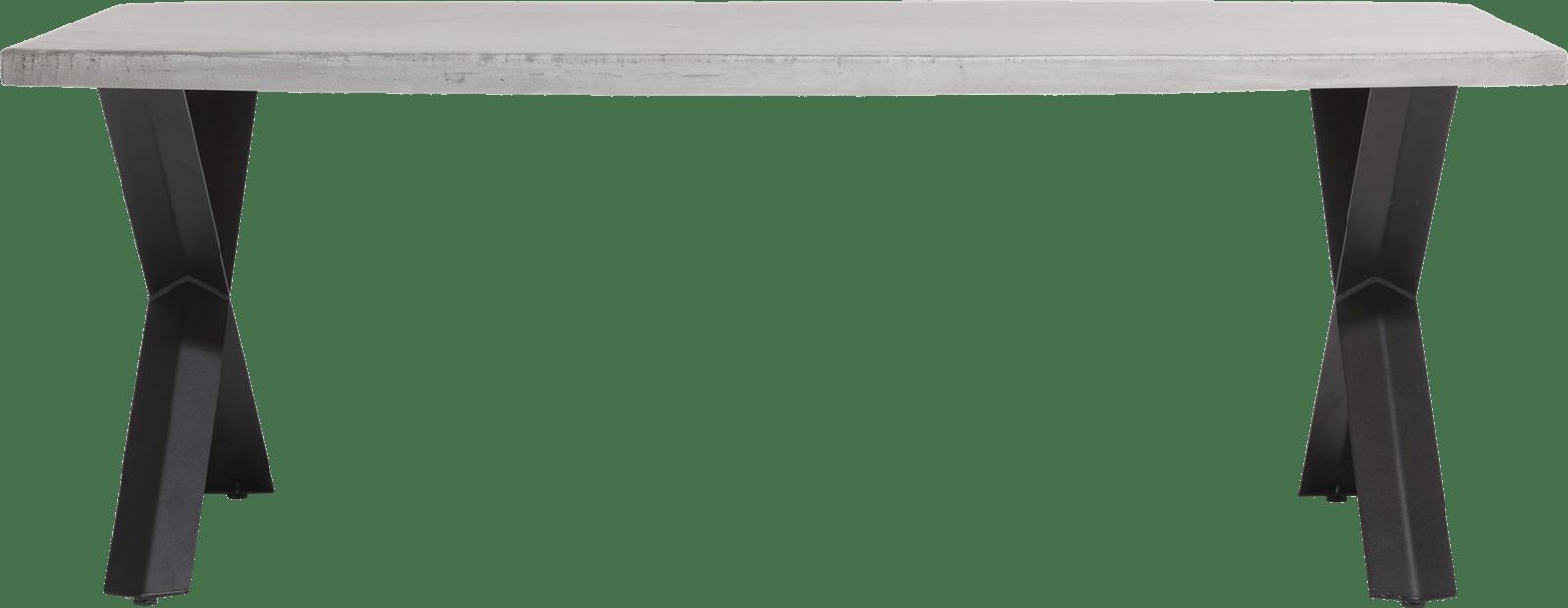 Maddox - eetkamertafel 220 x 100 cm - beton - x-poot