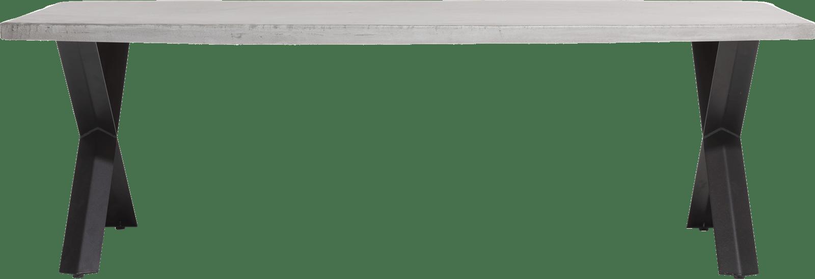 Maddox - eetkamertafel 250 x 100 cm - beton - x-poot