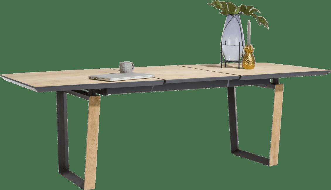 Darwin - uitschuiftafel 190 (+ 60) x 100 cm