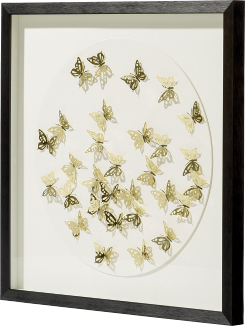 Coco Maison - shadow-box butterflies - 65 x 65 cm