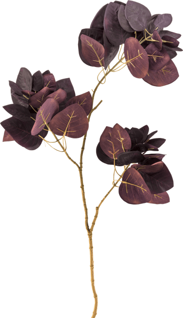 Coco Maison - cotinus spray - 85 cm