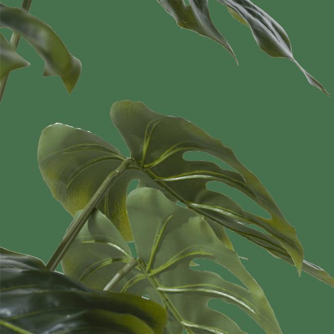 Coco Maison - monstera plant - 80 cm