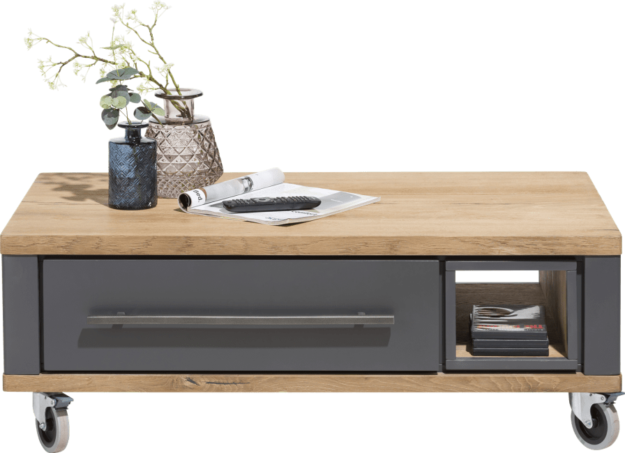 Jardin - table basse 100 x 60 cm + 2-tiroirs + 1-niche