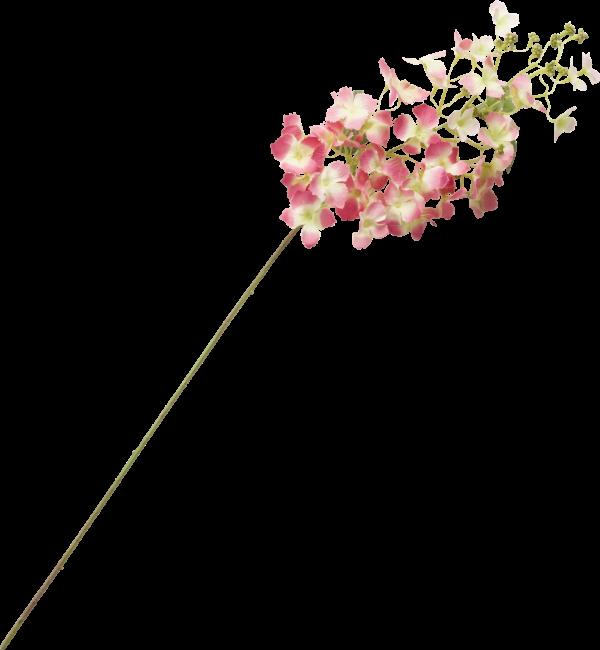 Coco Maison - hydrangea vine spray - 85 cm