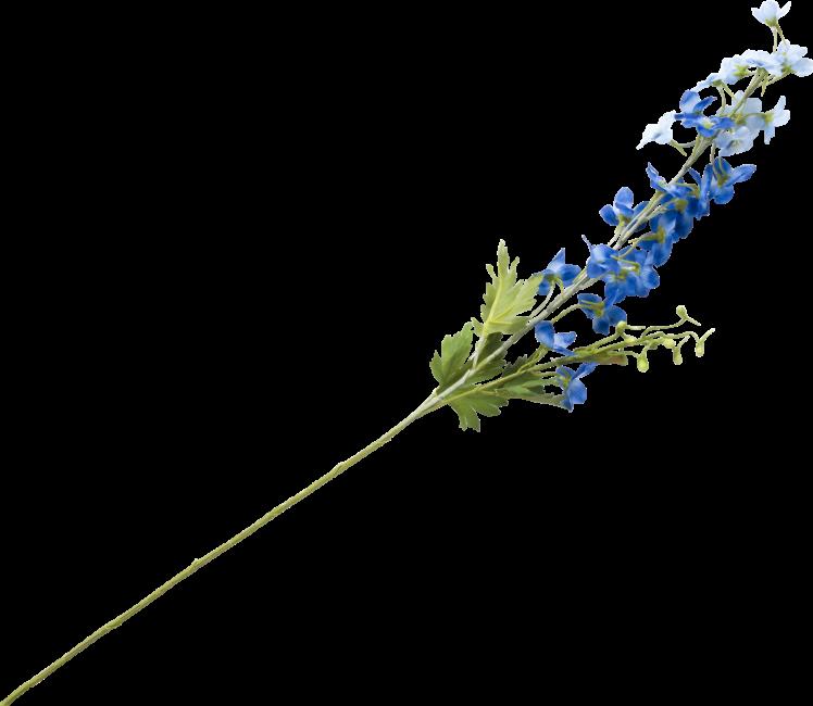 Coco Maison - delphinium spray - 77 cm