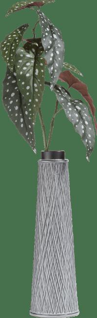 Coco Maison - begonia maculata spray - 90 cm
