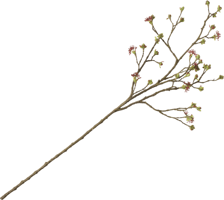 Coco Maison - maple fruit branch - 110 cm