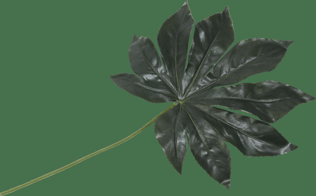 Coco Maison - fatsia leaf - 55 cm