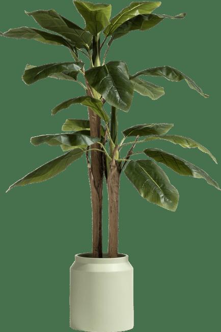 Coco Maison - banana tree - 140 cm