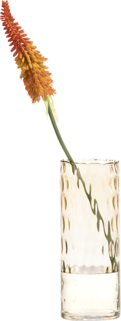 Coco Maison - kniphofia spray - 85 cm