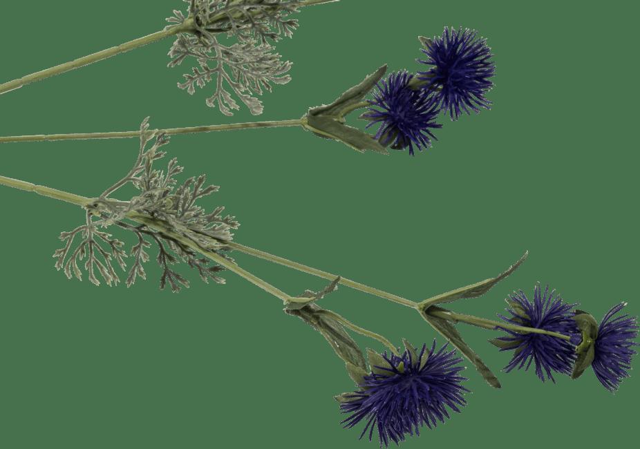 Coco Maison - wild flower spike - 80 cm