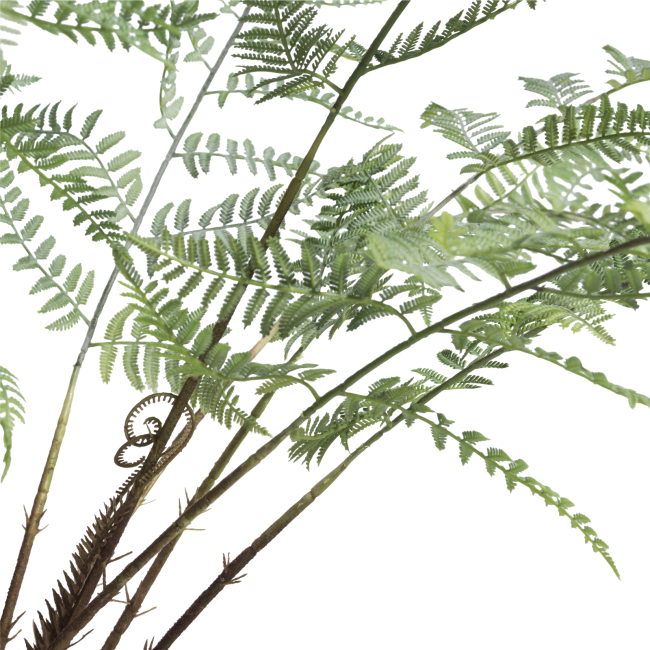 Coco Maison - fern plant in plastic pot - 100 cm