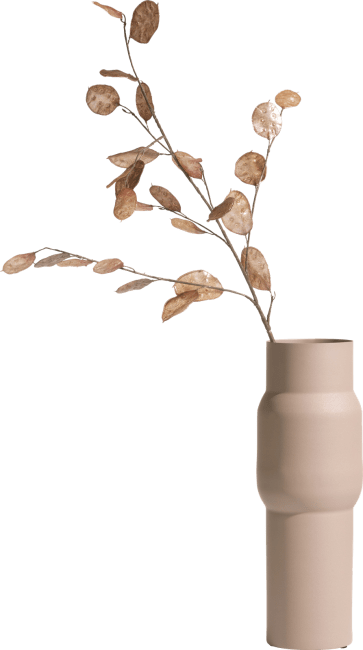 Coco Maison - lunaria spray - 105 cm