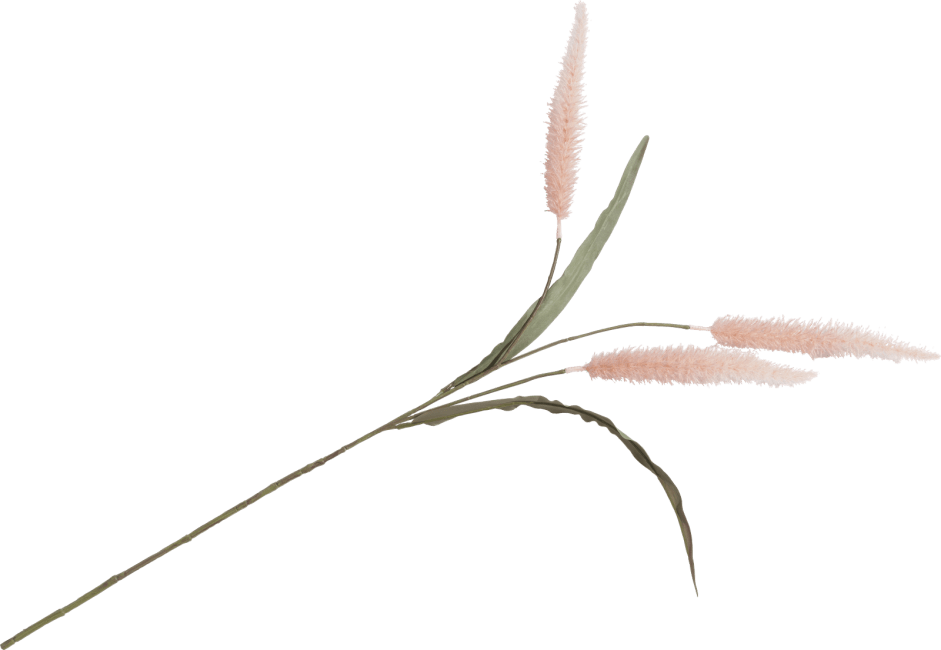 XOOON - Coco Maison - pennisetum spray h93cm