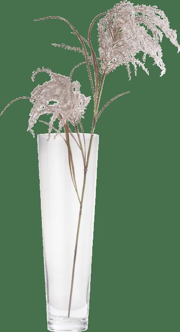 XOOON - Coco Maison - pampas grass spray h134cm