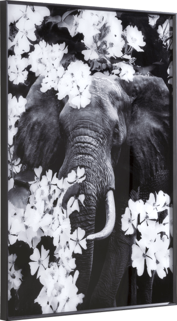Happy@Home - Coco Maison - flower elephant print 100x68cm