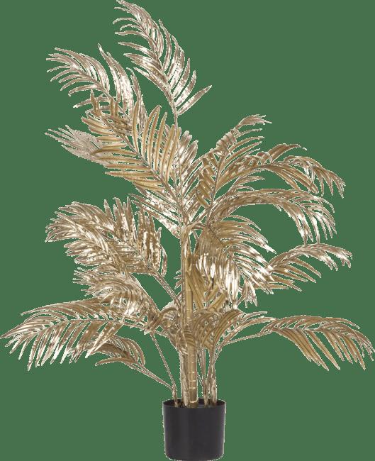 XOOON - Coco Maison - areca palm plant h105cm