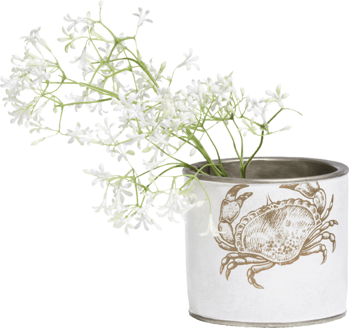 XOOON - Coco Maison - crabby pot h13cm