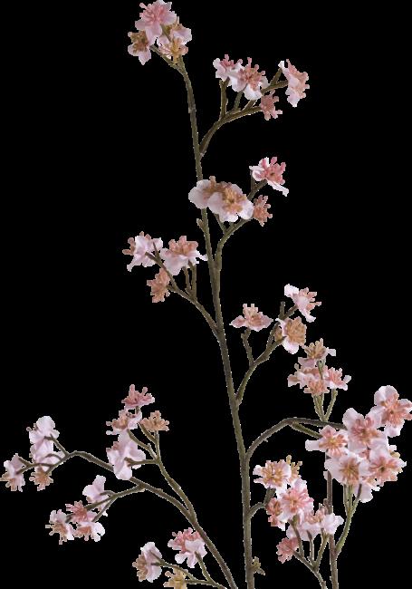Happy@Home - Coco Maison - wild blossom spray h114cm