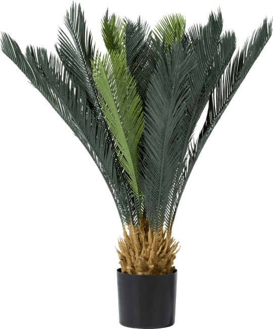 XOOON - Coco Maison - cycas revoluta artificial plant h90cm