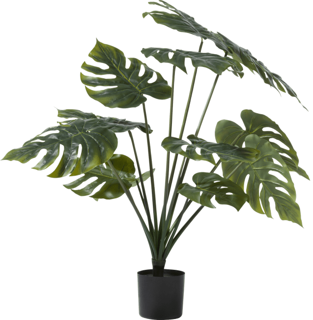 XOOON - Coco Maison - monstera artificial plant h80cm