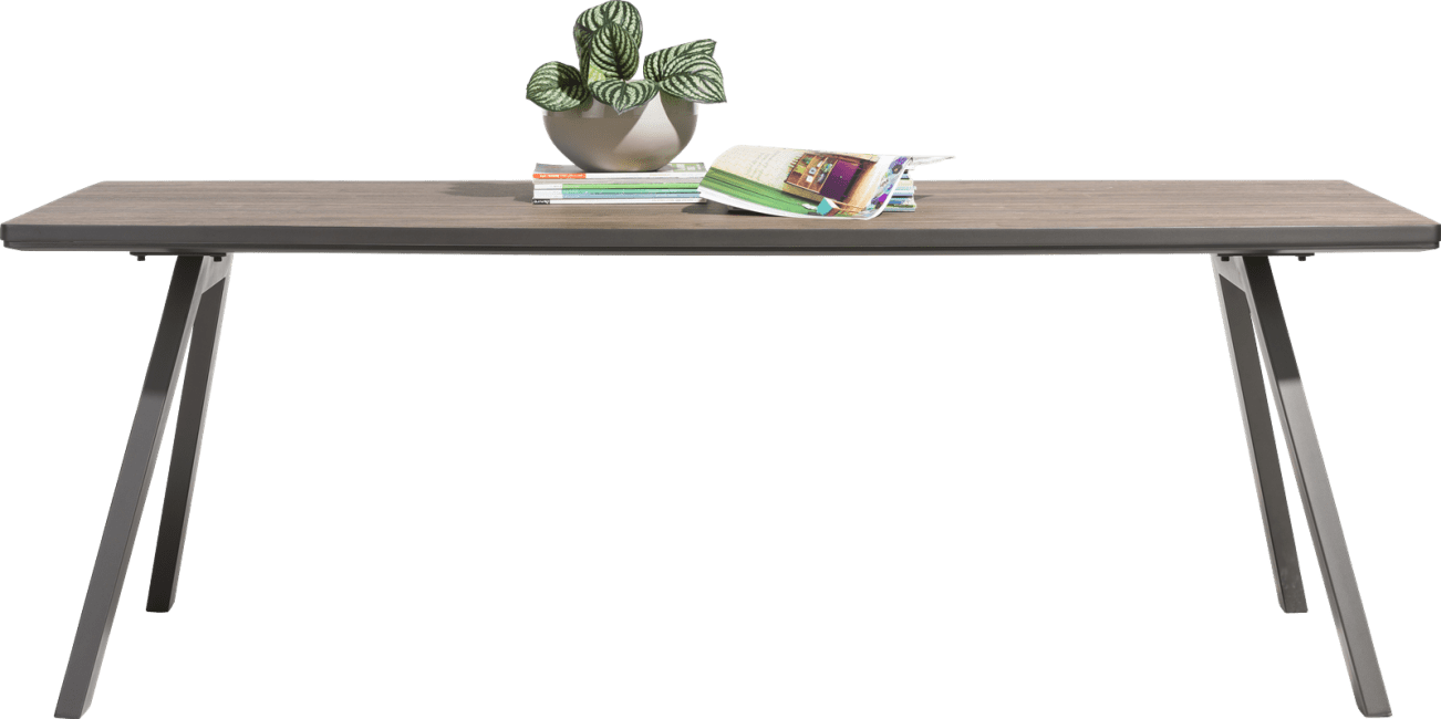Happy@Home - Madeira - Modern - eetkamertafel 220 x 98 cm