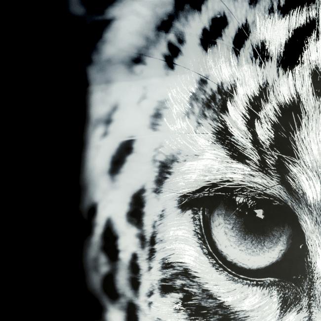 Happy@Home - Coco Maison - cheetah fotoschilderij 70x100cm
