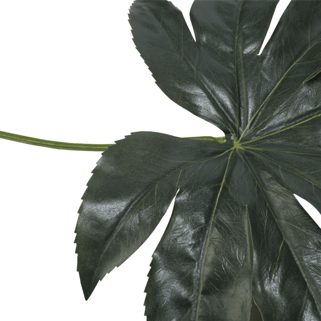 XOOON - Coco Maison - fatsia leaf artificial flower h55cm