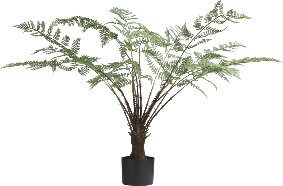 XOOON - Coco Maison - fern artificial plant h100cm