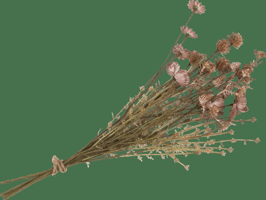 XOOON - Coco Maison - dry flower bouquet - 57 cm