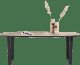 table ovale 210 x 110 cm