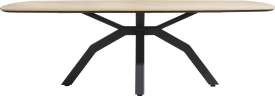 table ovale 220 x 108 cm