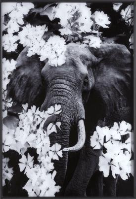 flower elephant toile imprimee 100x68cm