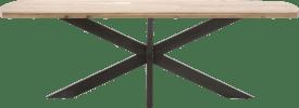 table 250 x 105 cm