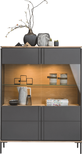 vitrine 110 cm - 2-portes en verre (+ led)
