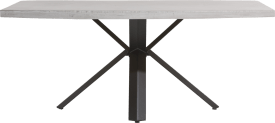 eetkamertafel 190 x 100 cm - beton - sterpoot