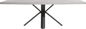 dining table 250 x 100 cm - concrete - star leg
