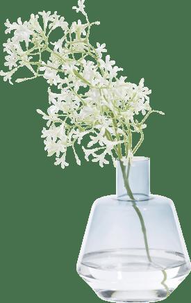 isabella vase h17cm