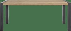 eetkamertafel 160 x 100 cm - metalen u-poot