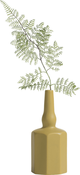 curve vase s h22cm