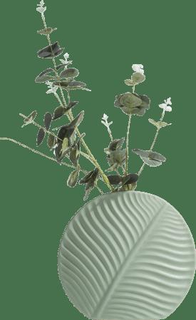 banana leaf vase m h24cm