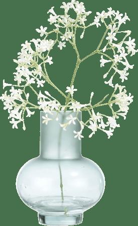 charlotte vase h23cm