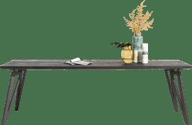 eetkamertafel 250 x 100 cm