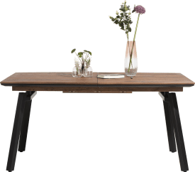 extendable dining table 160 (+ 60) x 100 cm