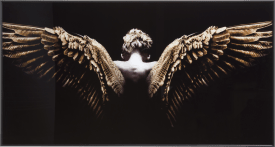 angel wings bild 80x150cm