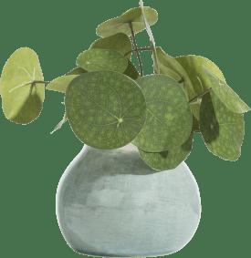 amalfi vase h13cm